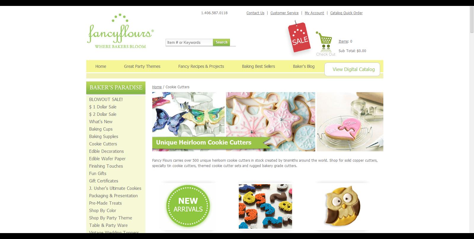 Successful Websites Begin Here